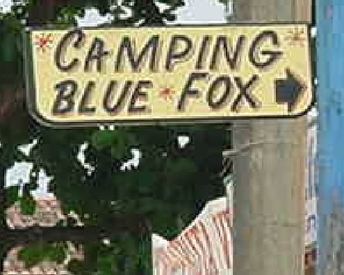 Camping Blue Fox