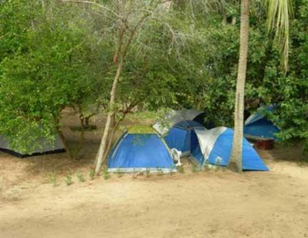 Camping das Mangueiras-Tibau do Sul-RN