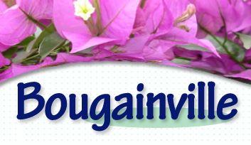Camping Sítio Pousada Bougainville