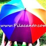 Camping Pilacanto