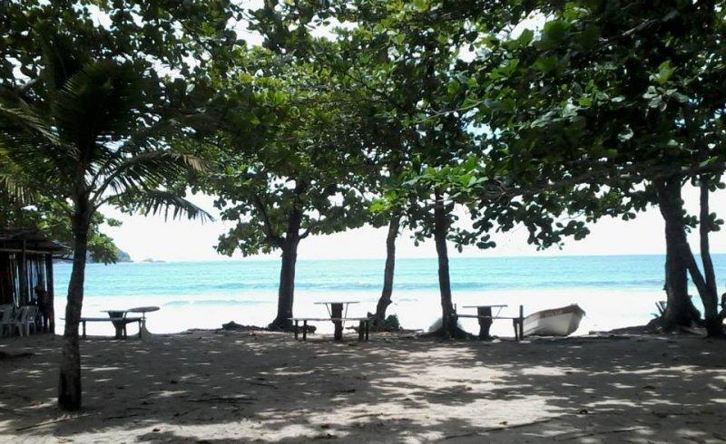 Camping das Pitangas (Seu Nico)