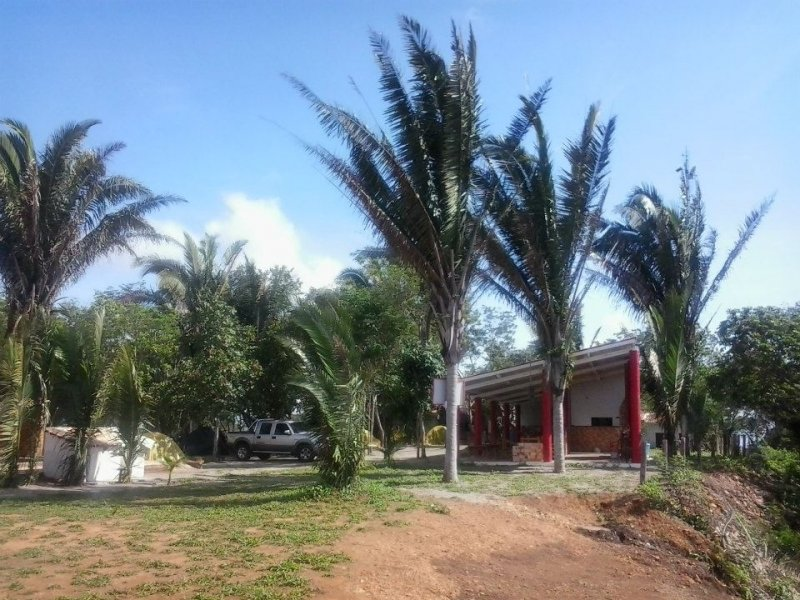 Camping Mirante Delta Matriz-