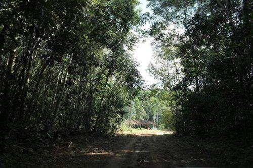 Camping Cachoeira Berro d´Água-presidente figueiredo-am-1