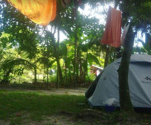 Camping William Michaud