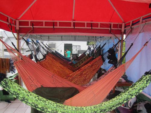 Amazon Hostel