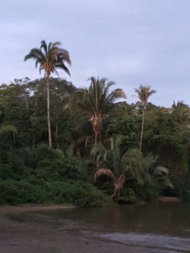 Camping Fazenda Cachoeira das Palmeiras II-coxim-MS 22