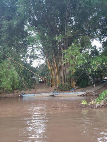 Camping Fazenda Cachoeira das Palmeiras II-coxim-MS 2838
