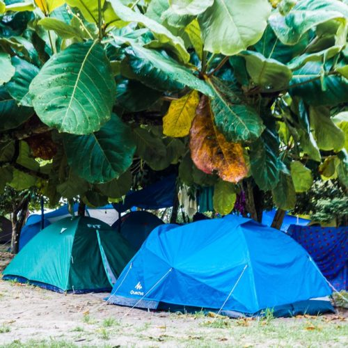 Camping Tubarão Superagui