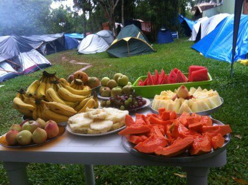 Camping Bicho Do Mato
