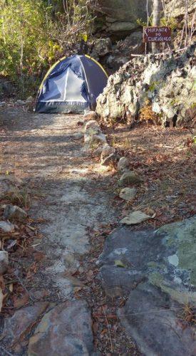 Camping Quintal do Curiólogo