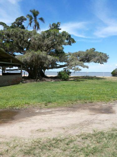 Camping dos Pinheirais da Lagoa