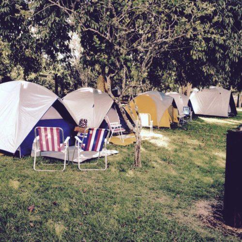 camping mundo nativo - gravataí-rs