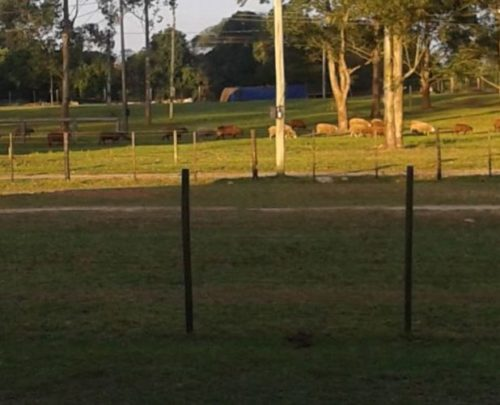 Apoio RV - Caverá Country Park - Araranguá 1
