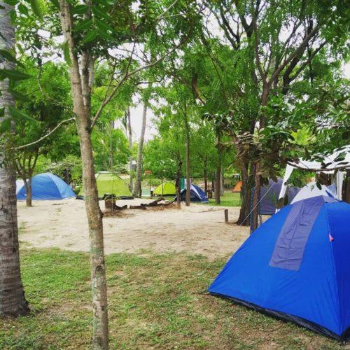 Camping Aldeia Maracajaú - Maxaranguape - SE 6