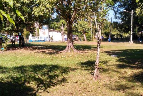 Camping Municipal Lagoa Santa