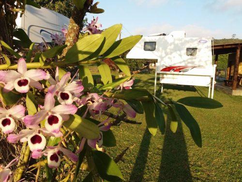 Camping Sítio Sol Nascente 4