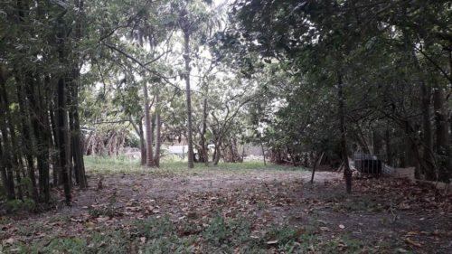 Camping Costa de Dentro