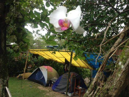 Camping das Pitangas - Praia do Sono-rj-15