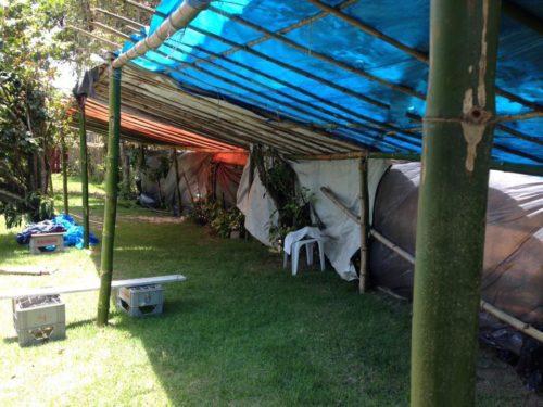 Camping das Pitangas - Praia do Sono-rj-6