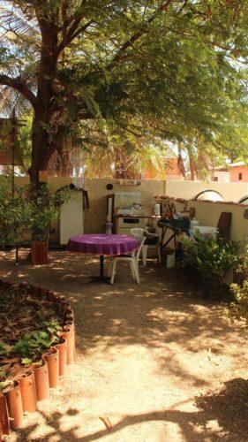 Eco Camping Flor da Moringa-Aracati-CE-6