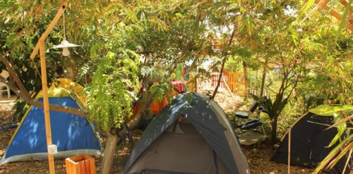 Eco Camping Flor da Moringa-Aracati-CE-7