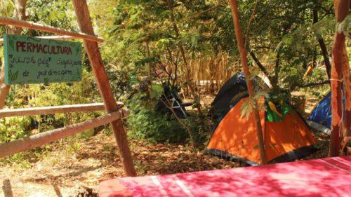 Eco Camping Flor da Moringa-Aracati-CE-8