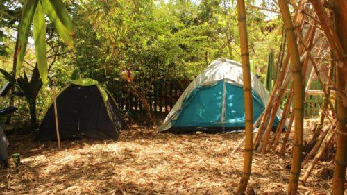 Eco Camping Flor da Moringa-Aracati-CE-9