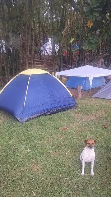 camping Floripa Surf Camp-Florianópolis-SC-7