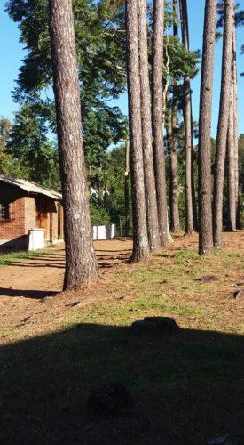 camping paraiso-santa cruz do sul-rs-8