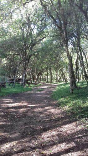 camping rancho alegre-encruzilhada do sul-rs-3