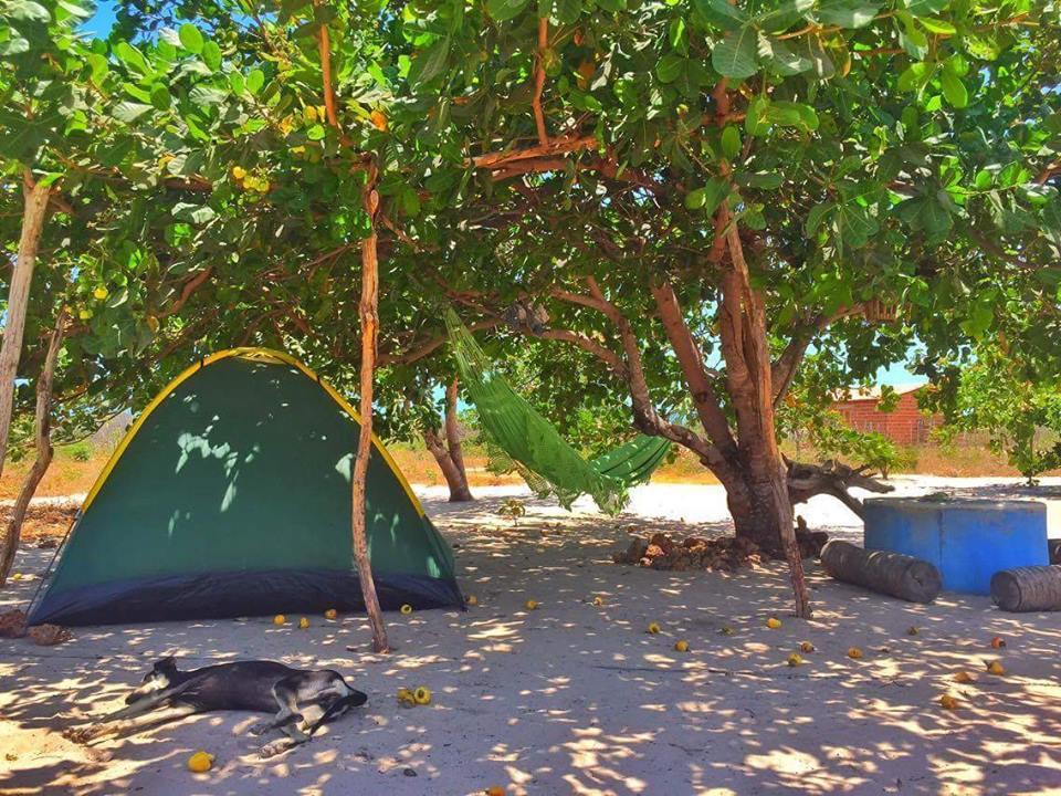 Caju Brisa Camping