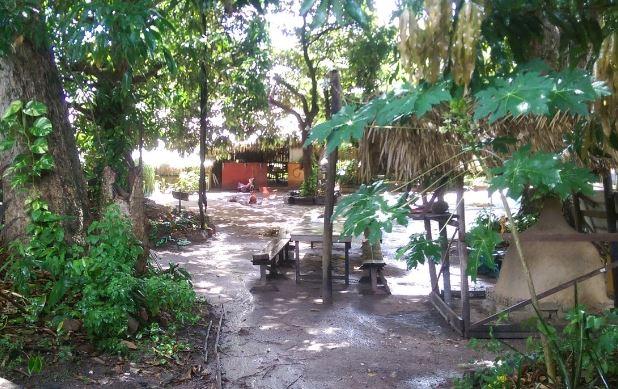 Iguanas Camping-Alter do Chão-Santarém-PA 5