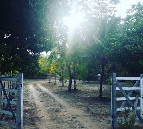 Camping Sitio Santo Antonio-itaporanda dajuda-se-2