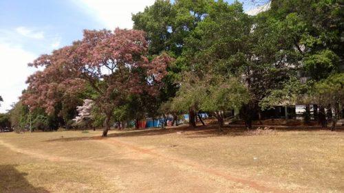 camping cata vento hostel-alto paraíso de goiás-chapada dos veadeiros-GO-6