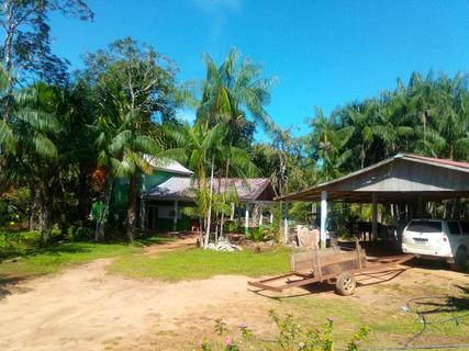 camping balneário do netinho-Nova Brasilândia DOeste-ro-6