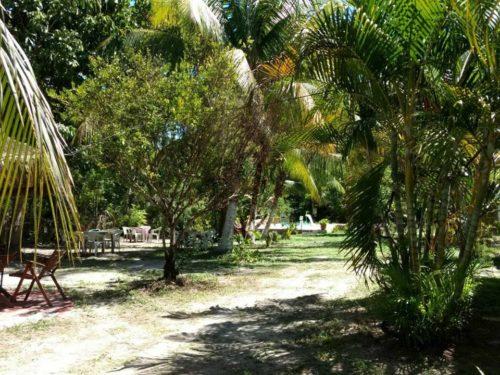 camping praia do forte-mata de são joão-ba-15