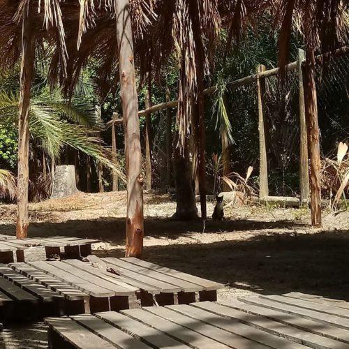 camping praia do forte-mata de são joão-ba-2