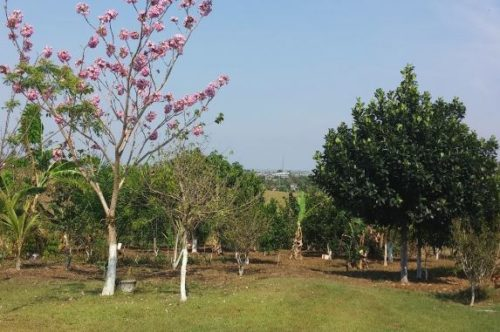 Camping Club Bairro-nova brasilandia do oeste-ro