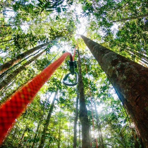 Camping Ecoforest Adventure-Manaus-AM-3