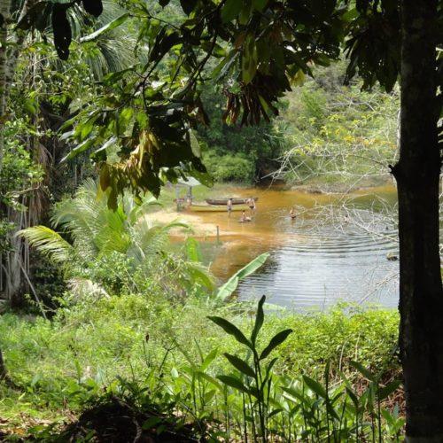 Camping Ecoforest Adventure-Manaus-AM-4
