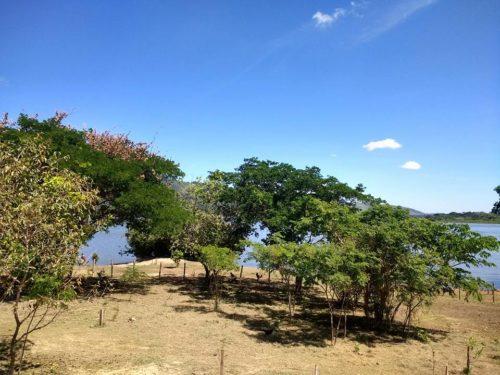 Camping Rio Xingu