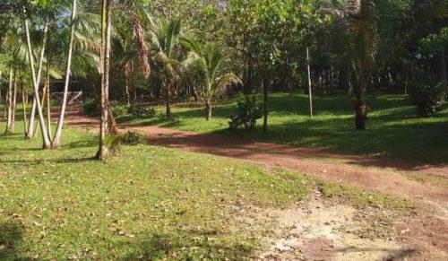 camping sitio são francisco-Benevides-PA-4