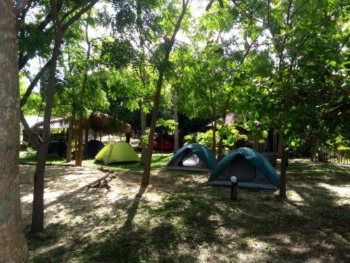 Camping Aldeia Maracajaú - Maxaranguape - SE 40