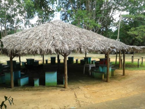 Camping Praia do Nozinho-MArtinho Campos-MG-1