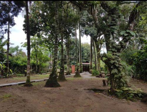 Camping das Palmeiras-ilha grande-rj-2