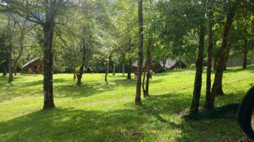 Camping do Alambique-Vista Alegre do Prata-RS-5