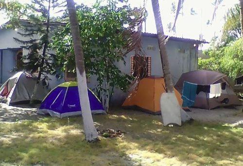 Camping Top