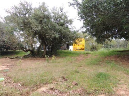 Camping Selvagem - Estaleiro - Triunfo4