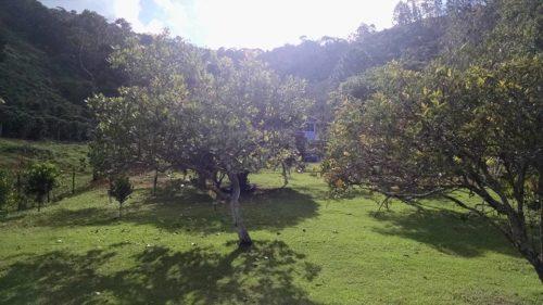 Camping Pousada Vilela