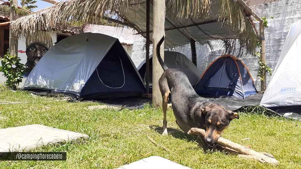 Camping Estação Cultural Flor & Cabelo-caucaia-ce-4